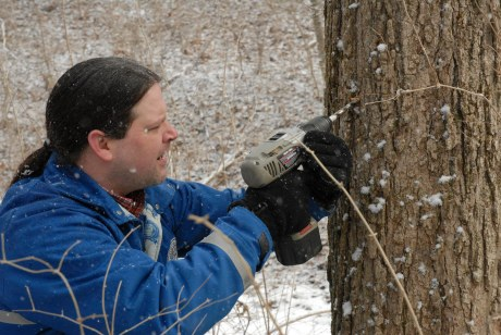 Joshua S. drilling a hole in a ahsenaamiši 'maple tree' for tapping at the Eichel Property outside of Oxford