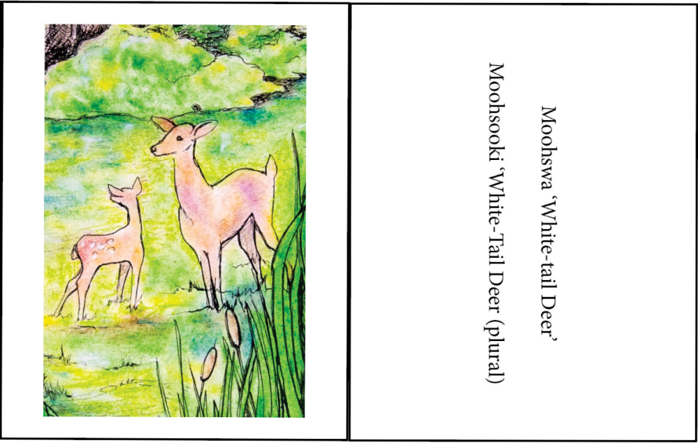 This is an example of the front and back for one summer poster information card.