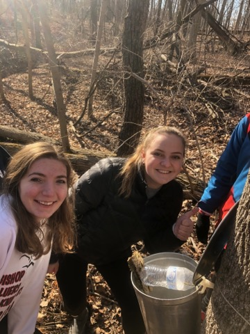 Gretchen Spenn (left) and Grace Cooper (right) set up a tap and bucket on Miami University's Oxford Campus
