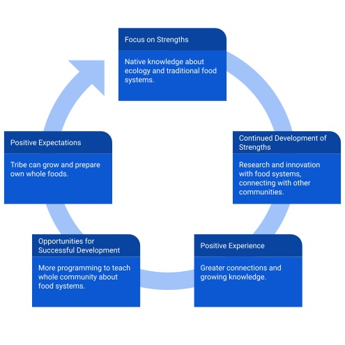 Diagram of the strengths-based approach